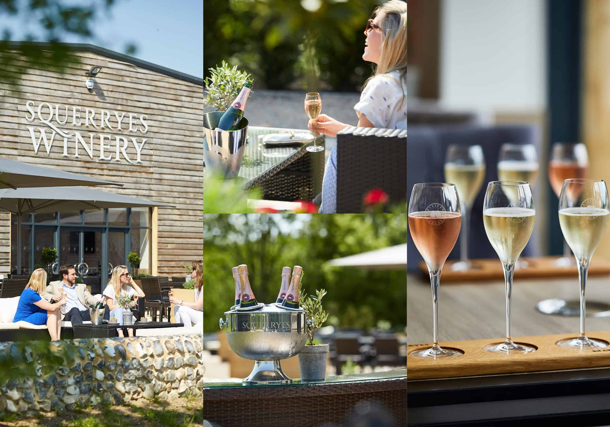 Squerryes sparkling in the Wine Garden of England